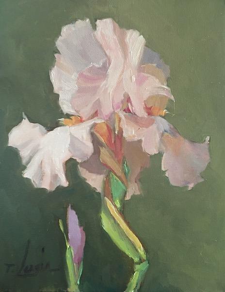 IRIS No. 4 by Trisha Vergis - 10 x 8 in., oc/b •SOLD