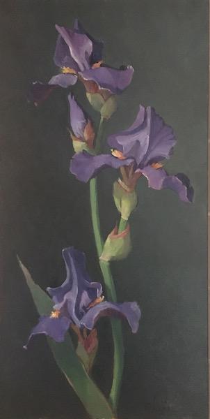 IRIS No. 6 by Trisha Vergis - 24 x 12 in., oc/b •$2,400